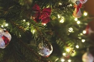 arboles de navidad venta